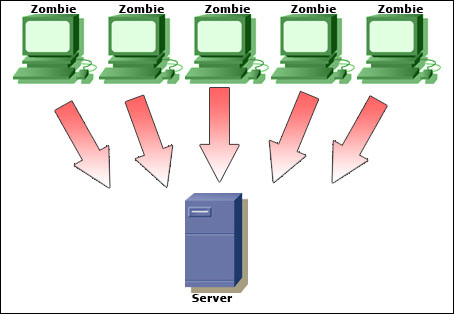 How to Prevent Denial of Service Attacks : Learn-